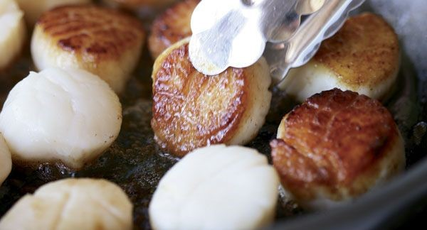 LEARN TO COOK: SEARED SCALLOPS